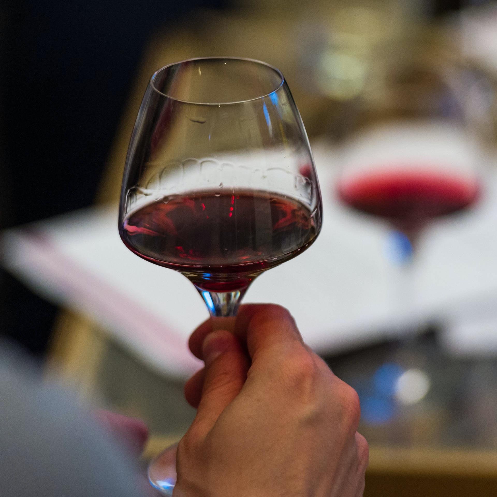 2015 Le Vignoble English Winemakers May28 500